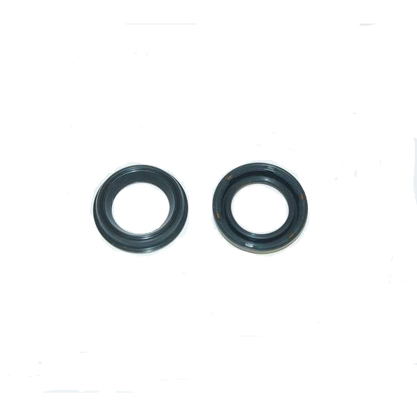 24v (48v W12 6.0L) Cam Phaser Seals (pair)