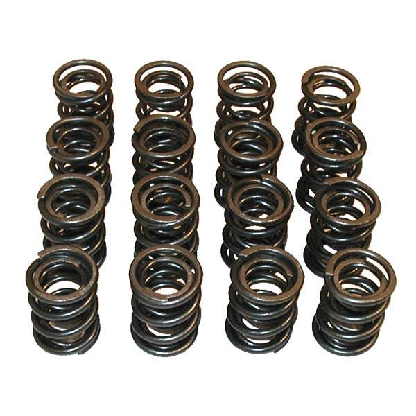 Heavy-Duty Valve Springs for 16V (Set of 16)