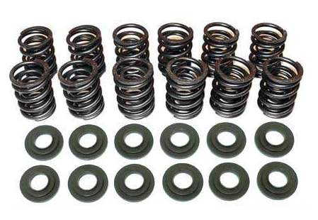 Heavy-Duty Dual 12v Valve Springs Upgrade Kit for '96 Audi 2.8L