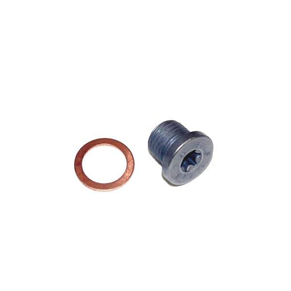 OEM Oil Drain Plug-Torx Drive w/Copper Washer
