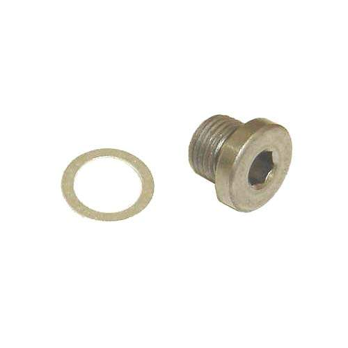 10mm Oil Galley Plug w/sealing washer