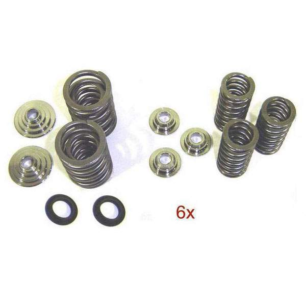 5v V6 H.D. Valve Spring Kit with Titanium Retainers